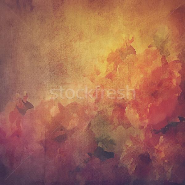 Vintage kwiaty róż grunge malarstwo stylu Zdjęcia stock © kostins