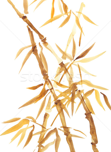 Bamboo Watercolor Asian Style Painting Stock photo © kostins