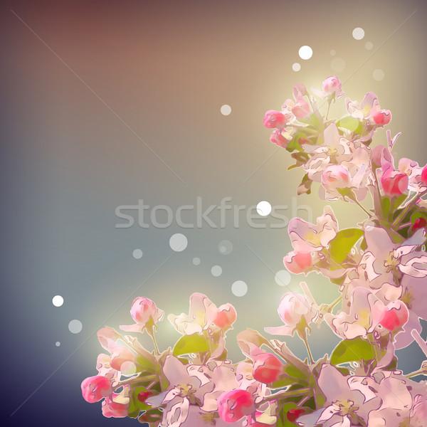 Shining Cherry blossom background Stock photo © kostins