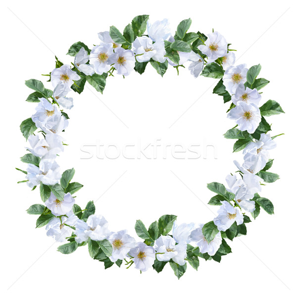Watercolor Flower Wreath Stock photo © kostins