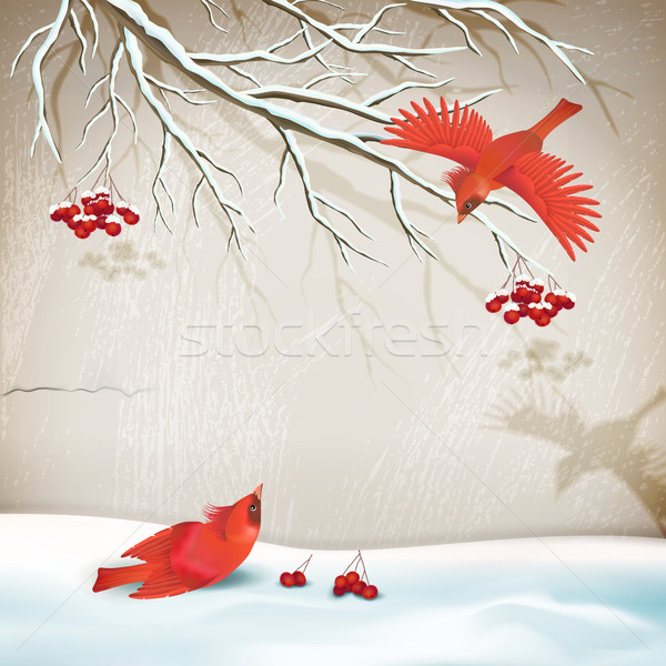 Winter Landscape with Birds Stock photo © kostins