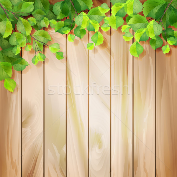 Yeşil yaprakları ahşap doku vektör sezon ağaç Stok fotoğraf © kostins