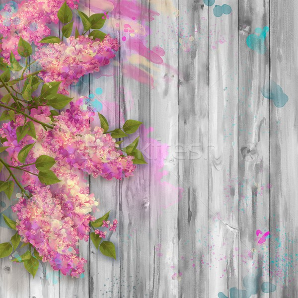 акварель рисунок сирень весны Сток-фото © kostins