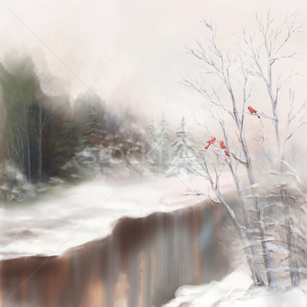 Winter river birds watercolor landscape in mist Stock photo © kostins