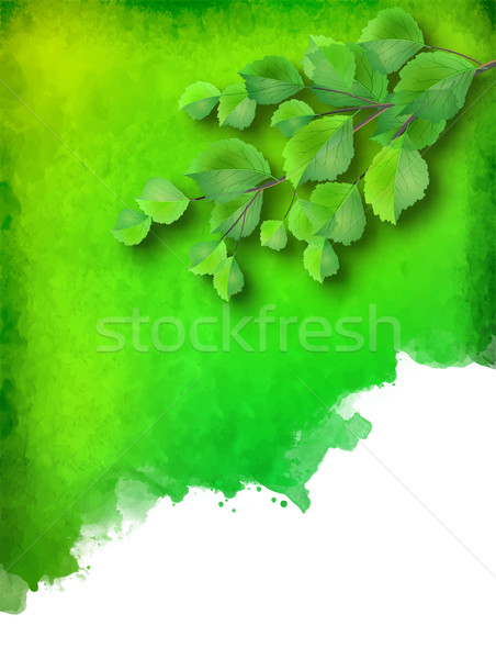 Vector aquarel plek groene bladeren abstract Stockfoto © kostins