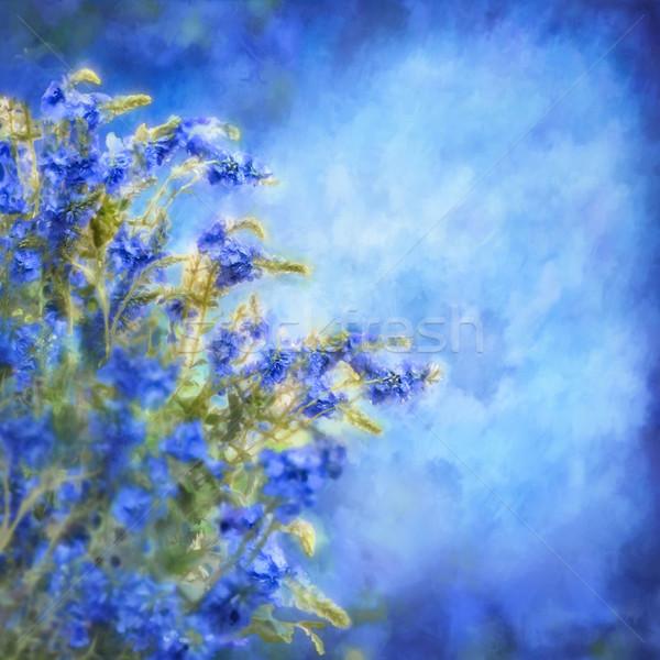 Romântico azul pintura flores aquarela ilustração Foto stock © kostins
