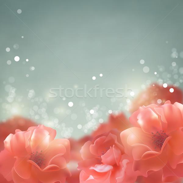 Shining flowers roses background Stock photo © kostins