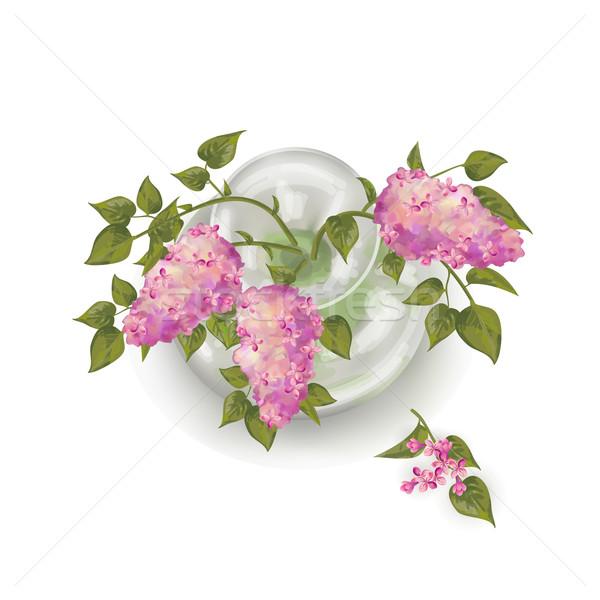 Váza vektor felső kilátás virágcsokor orgona Stock fotó © kostins