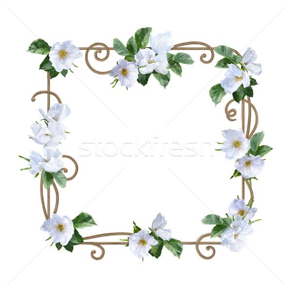 Aquarel bloem frame decoratief schilderij witte Stockfoto © kostins