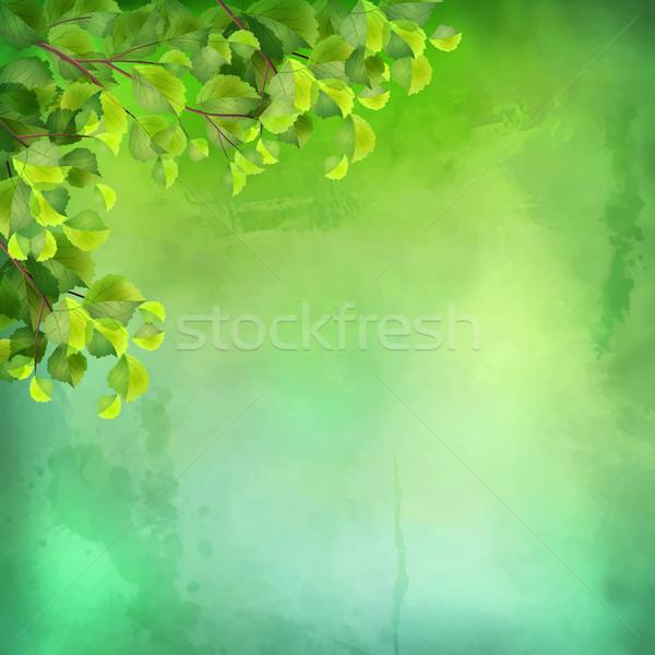 Vektor vízfesték zöld levelek dekoratív grunge kifejező Stock fotó © kostins