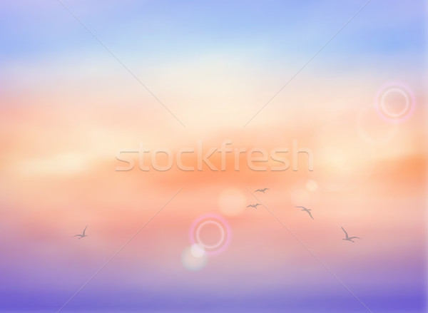 Felhő égbolt vektor felhők napfelkelte madarak Stock fotó © kostins