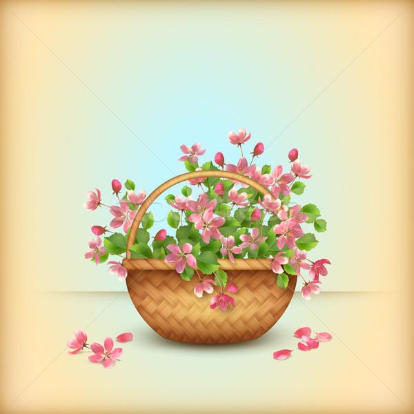Foto stock: Primavera · cesta · cereja · flores · cartão
