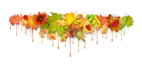 Autumn Vector Dripping Paint Leaves Stock photo © kostins