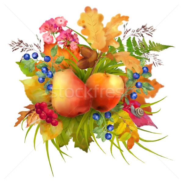 Couleur pour aquarelle automne pomme poire fleurs chêne Photo stock © kostins