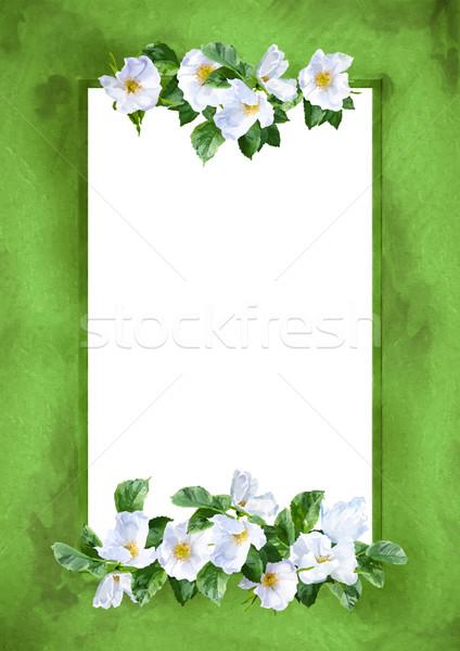 Acquerello fiore frame decorativo pittura bianco Foto d'archivio © kostins