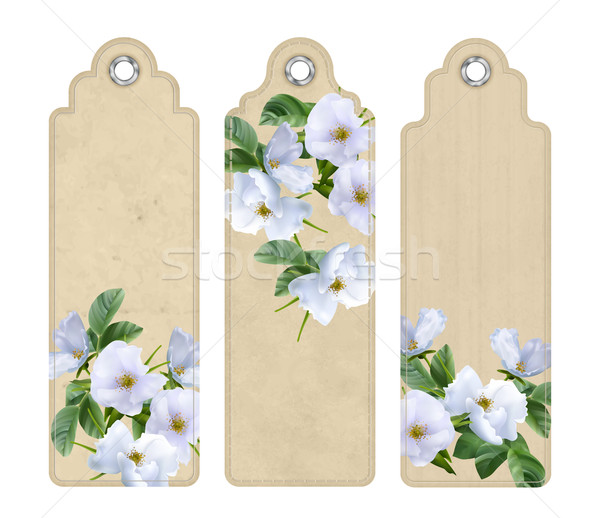 Bookmark with White Flowers Stock photo © kostins