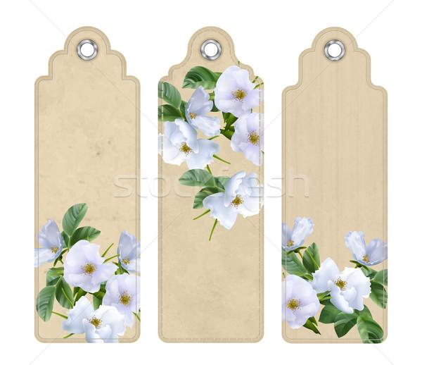 Dodaj do ulubionych białe kwiaty zestaw dekoracyjny zakładki Zdjęcia stock © kostins