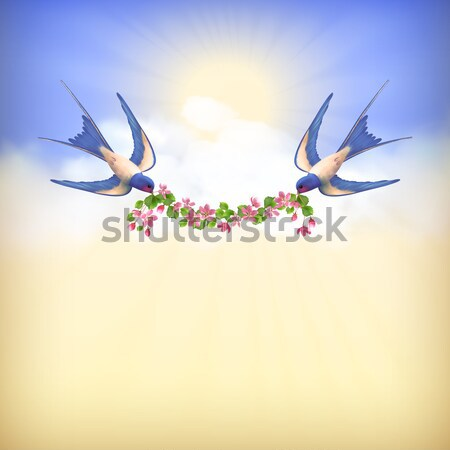 Flying Bird Swallow Vector Card Stock photo © kostins