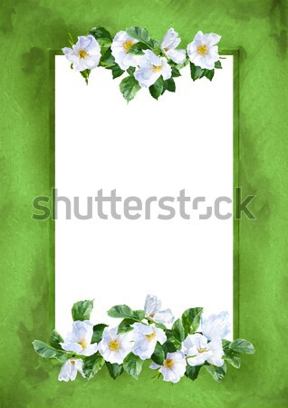 Watercolor Flower Frame Stock photo © kostins