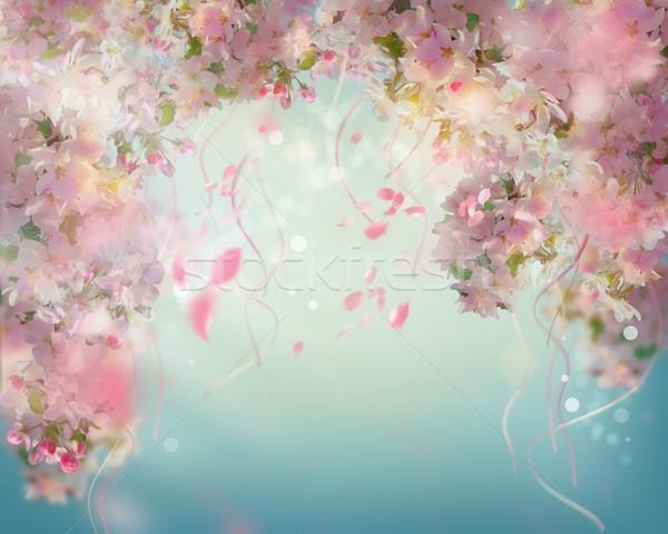 Voorjaar kersenbloesem vallen bloemblaadjes Stockfoto © kostins