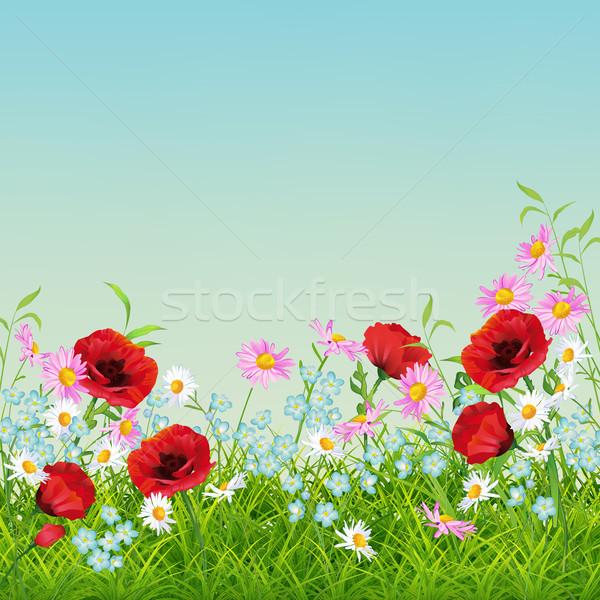 Foto stock: Vetor · verão · flor · aviador · temporada · floral