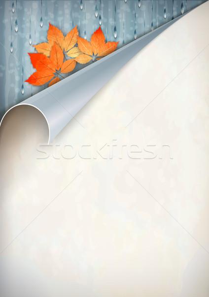 Autumn Vector Corner Card Stock photo © kostins