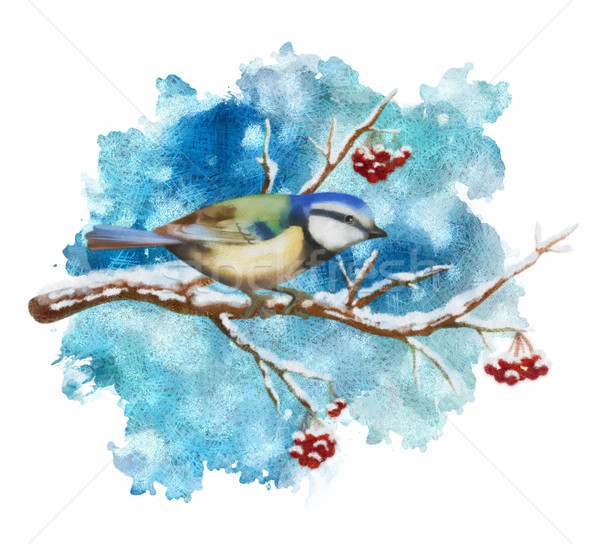 Pastel bird tit on winter branch Stock photo © kostins