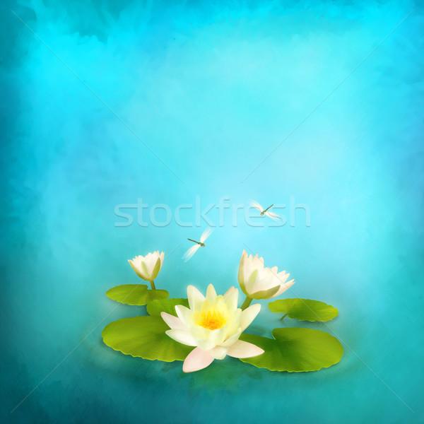 Víz liliom szitakötő festmény virágmintás vízi Stock fotó © kostins