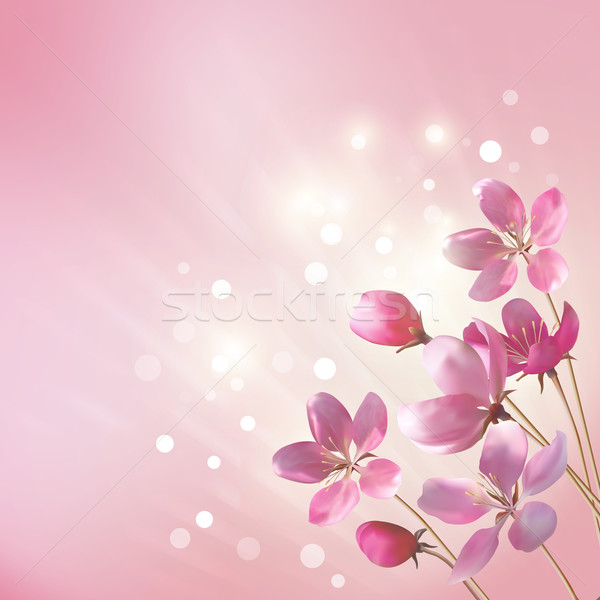 Shining pink flowers background Stock photo © kostins