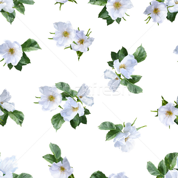 Watercolor Seamless Pattern Stock photo © kostins