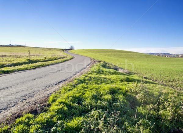 Road in the fields Stock photo © Koufax73