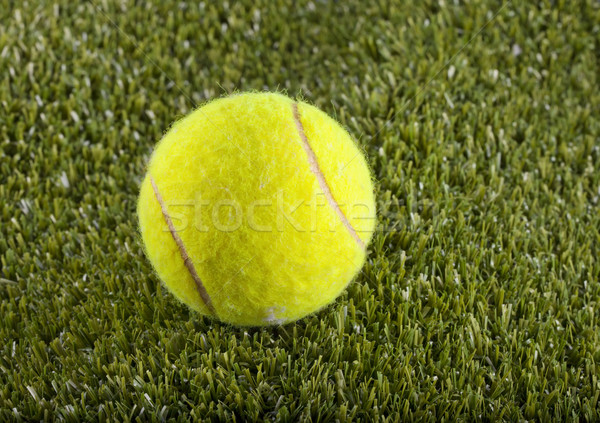 Tennisbal Geel groen gras veld gras achtergrond Stockfoto © Koufax73