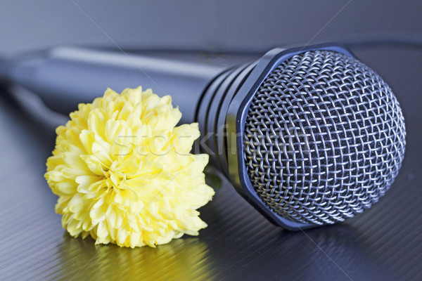 Microphone and flower Stock photo © Koufax73