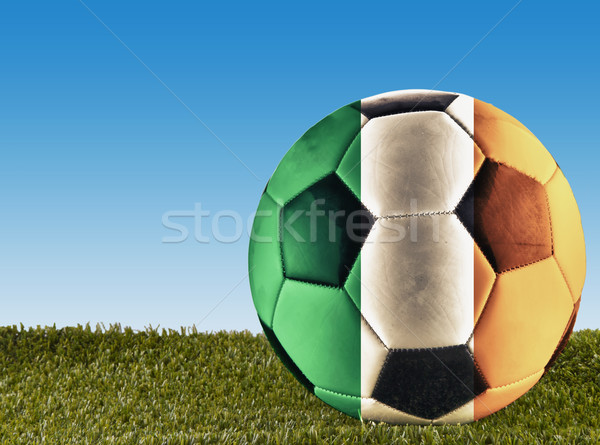 Irlandés fútbol hierba decorado bandera fútbol Foto stock © Koufax73