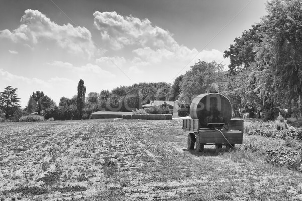 Foto stock: Campo · preto · e · branco · céu · caminhão · verão · viajar