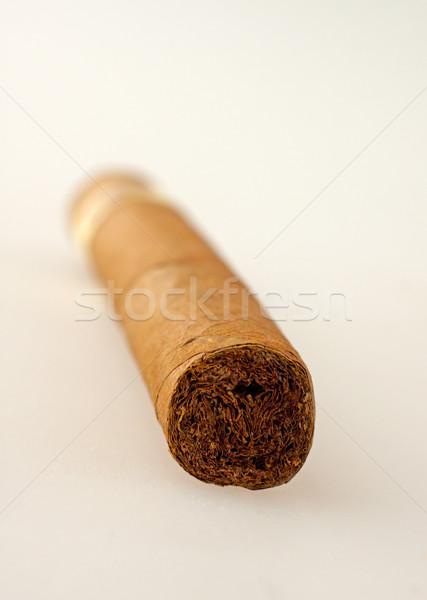 Cigar Stock photo © Koufax73