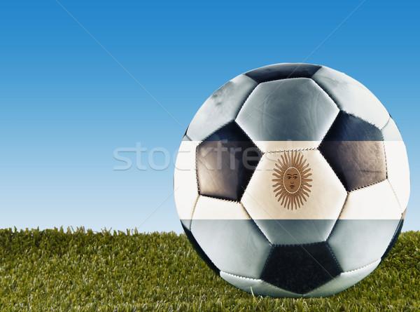 Argentinian football Stock photo © Koufax73