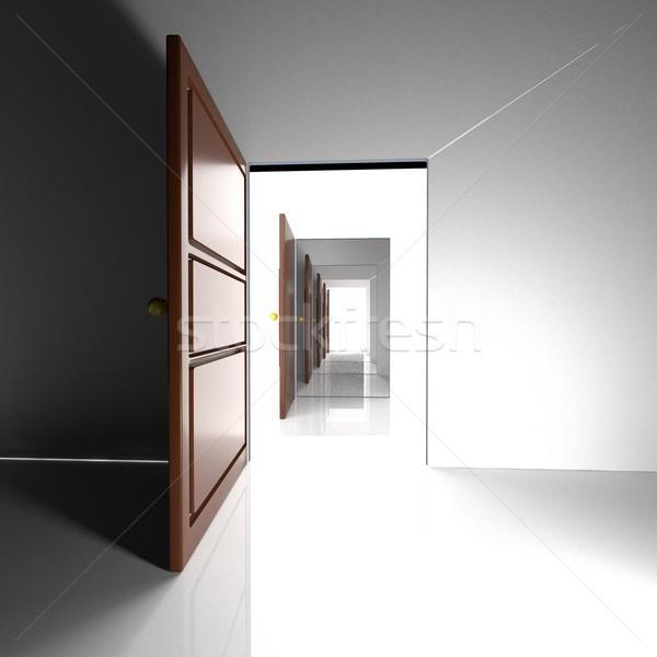 Doors and light Stock photo © Koufax73
