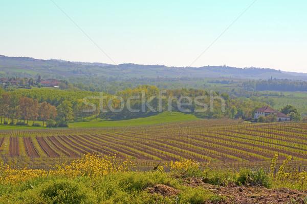 Landscape Stock photo © Koufax73