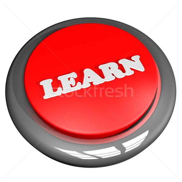 Learn button Stock photo © Koufax73