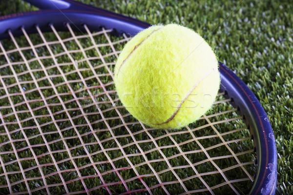 テニスボール ラケット 緑の草 水平な 画像 緑 ストックフォト © Koufax73