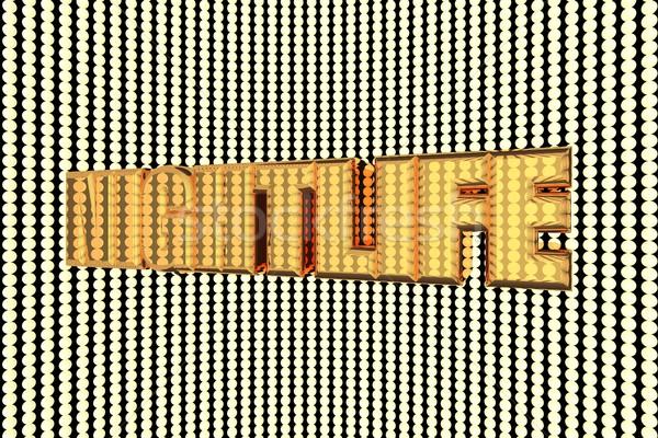 Nightlife Stock photo © Koufax73