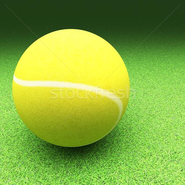 Tennis over lawn ground Stock photo © Koufax73