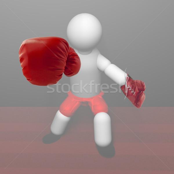 Boxer Stock photo © Koufax73