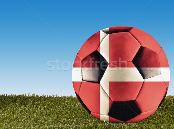 Dánia futball fű díszített zászló futball Stock fotó © Koufax73