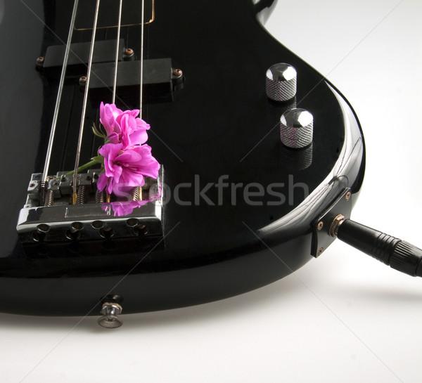 Bas çiçek gitar müzik vücut Stok fotoğraf © Koufax73