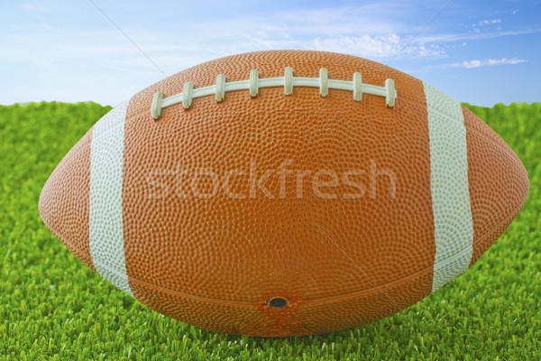 サッカー 緑の草 空 フィールド スペース ストックフォト © Koufax73
