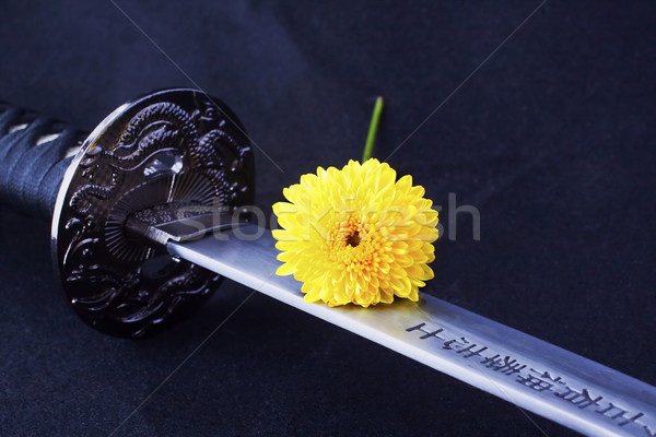 Blade and flower Stock photo © Koufax73