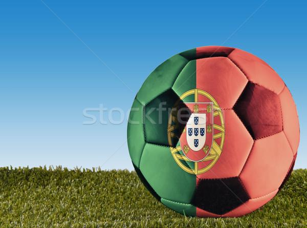 Portuguese football Stock photo © Koufax73