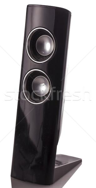 Amp nero verticale isolato bianco riflessione Foto d'archivio © Koufax73